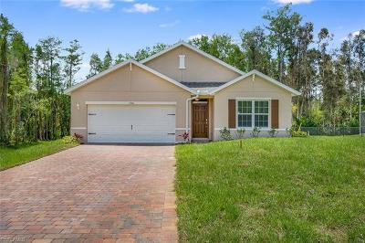 Fort Myers Single Family Home For Sale: 6540 Canton St