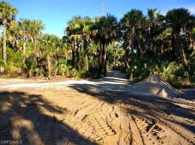 Naples Residential Lots & Land For Sale: 1301 Ivy Way