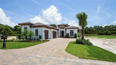 Estero Single Family Home For Sale: 19913 Montserrat Ln