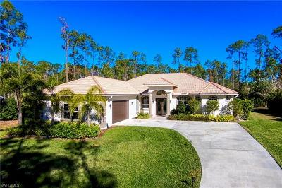 Single Family Home For Sale: 4891 Palmetto Woods Dr
