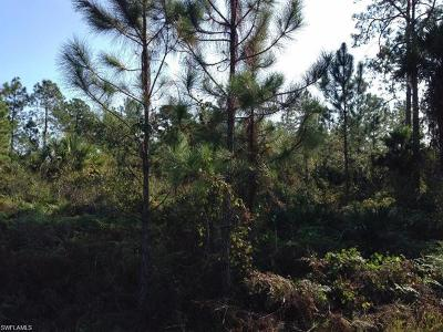 Naples Residential Lots & Land For Sale: 1110 N Everglades Blvd