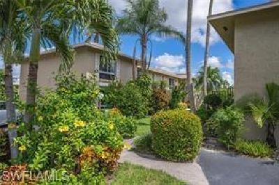Naples Condo/Townhouse For Sale: 373 Palm Dr #704