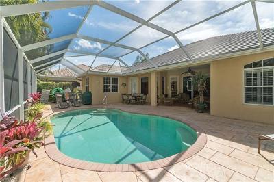 Single Family Home For Sale: 539 Cormorant Cv