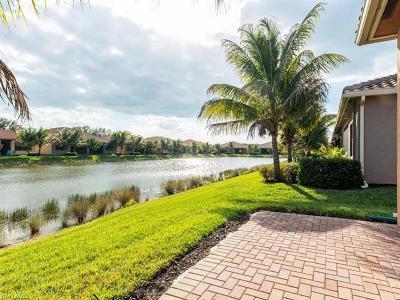 Naples Single Family Home For Sale: 13536 Monticello Blvd