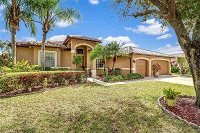 Naples Single Family Home For Sale: 677 Grand Rapids Blvd