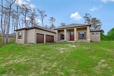 Bonita Springs Single Family Home For Sale: 10191 Strike Ln