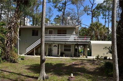 Naples Single Family Home For Sale: 605 NE 12th Ave