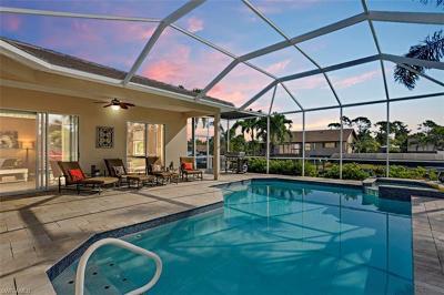 Bonita Springs Single Family Home For Sale: 27121 Driftwood Dr