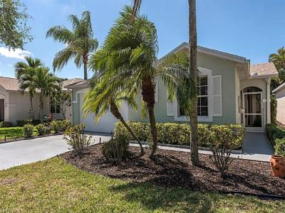 Bonita Springs Single Family Home For Sale: 9420 Village View Blvd