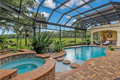 Fort Myers Single Family Home For Sale: 9311 Terabella Pl
