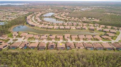 Estero Single Family Home For Sale: 21040 Bosco Ct