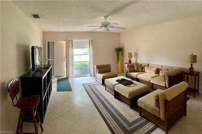 Naples Single Family Home For Sale: 753 Palm View Dr #DP9
