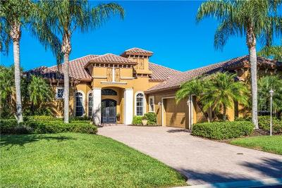 Bonita Springs Single Family Home For Sale: 28561 Via D Arezzo Dr