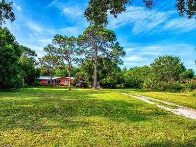 Estero Single Family Home For Sale: 4401 Williams Rd