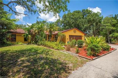 Naples Single Family Home For Sale: 581 NW 19th St