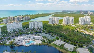 Naples Condo/Townhouse For Sale: 265 Indies Way #2