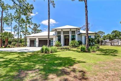 Naples Single Family Home For Sale: 723 S Weber Blvd