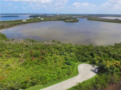 Marco Island Residential Lots & Land For Sale: 1005 Blue Hill Creek Dr