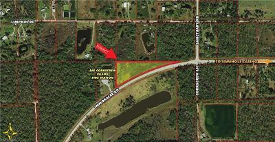 Naples Residential Lots & Land For Sale: 18673 Immokalee Rd