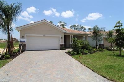 Fort Myers Single Family Home For Sale: 10245 Livorno Dr