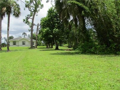Naples Single Family Home For Sale: 1280 Dove Tree St