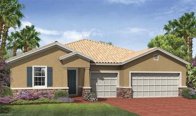Fort Myers Single Family Home For Sale: 2845 Royal Gardens Ave