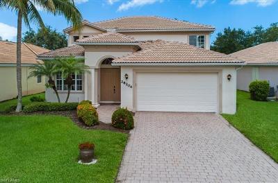 Bonita Springs Single Family Home For Sale: 28204 Robolini Ct