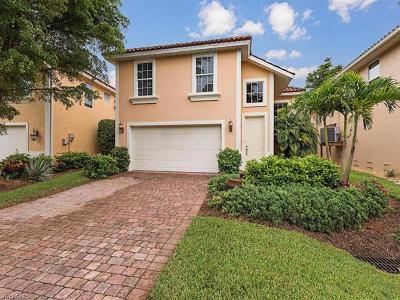Bonita Springs Single Family Home For Sale: 9161 Brendan Preserve Ct