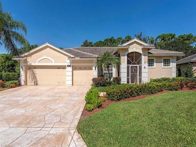 Bonita Springs Single Family Home For Sale: 25690 Streamlet Ct
