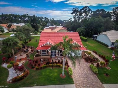 Single Family Home For Sale: 4364 Royal Wood Blvd
