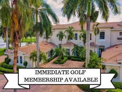 Naples FL Condo/Townhouse For Sale: $650,000