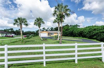 Naples Single Family Home For Sale: 1091 SW 27th St