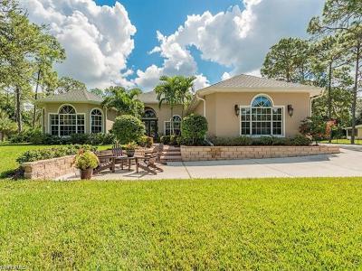 Bonita Springs Single Family Home For Sale: 24677 Rodas Dr