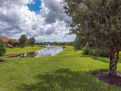 Bonita Springs Single Family Home For Sale: 11075 St Roman Way