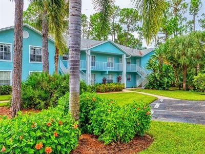 Bonita Springs Condo/Townhouse For Sale: 28280 NW Pine Haven Way #91