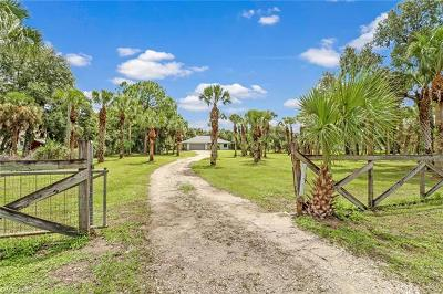 Naples Single Family Home For Sale: 690 NW 19th St