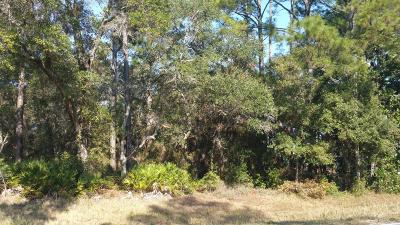 Navarre FL Residential Lots & Land For Sale: $14,900