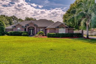 Jacksonville Single Family Home For Sale: 1111 Chandler Oaks Dr