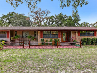 Green Cove Springs Single Family Home For Sale: 1327 Lake Asbury Dr