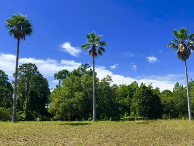 St. Johns County Residential Lots & Land For Sale: 408 Lacosta Villa Ct