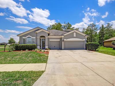 Middleburg Single Family Home For Sale: 4027 Sandhill Crane Ter