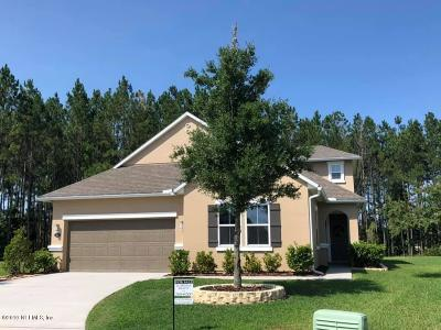 St Augustine Single Family Home For Sale: 242 Peter Island Dr