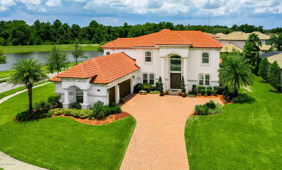 Austin Park, Coastal Oaks, Coastal Oaks At Nocatee, Del Webb Ponte Vedra, Greenleaf Preserve, Greenleaf Village, Kelly Pointe, Nocatee Single Family Home For Sale: 256 Auburndale Dr