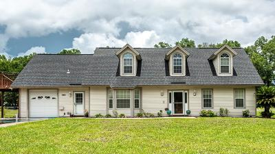 Green Cove Springs Single Family Home For Sale: 1950 S County Road 16a