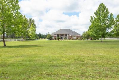 Sanderson Single Family Home For Sale: 13755 Leon Dopson Rd