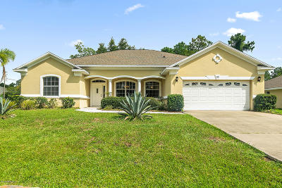 Flagler County Single Family Home For Sale: 55 Woodbury Dr