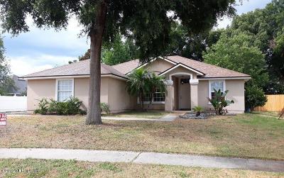 Jacksonville Single Family Home For Sale: 789 Rock Bay Dr