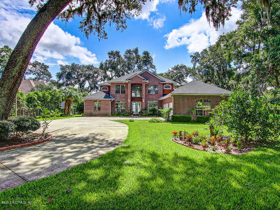 Orange Park, Fleming Island Single Family Home For Sale: 3305 Us Highway 17
