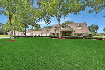 Middleburg Single Family Home For Sale: 11207 Branan Field Rd