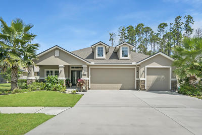 Nocatee Single Family Home For Sale: 213 Coconut Palm Pkwy